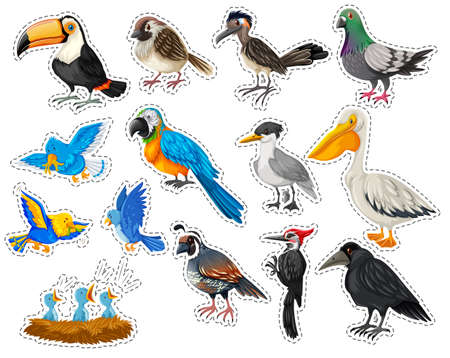macaw: Sticker set with many types of birds illustration
