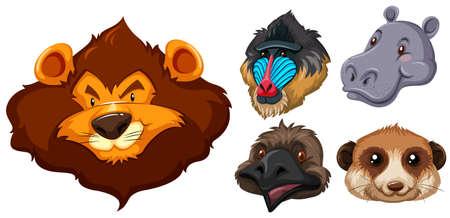animal heads: Animal heads on white background illustration Illustration