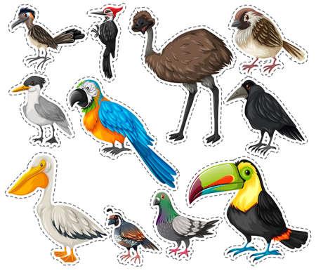 emu bird: Sticker set with many birds illustration
