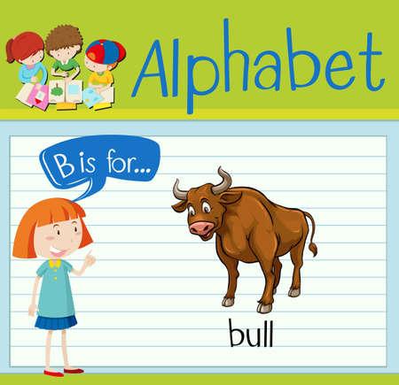 Flashcard letter B is for bull illustration