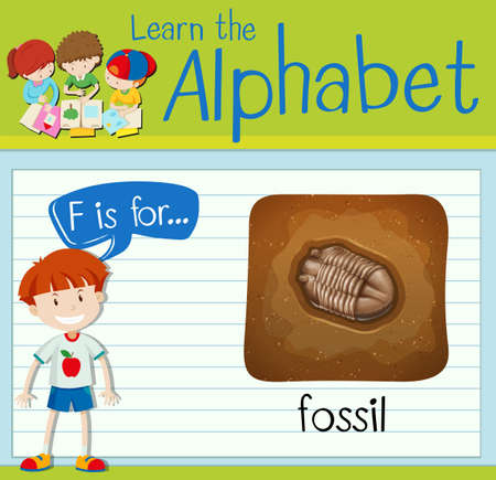 fossil: Flashcard letter F is for fossil illustration
