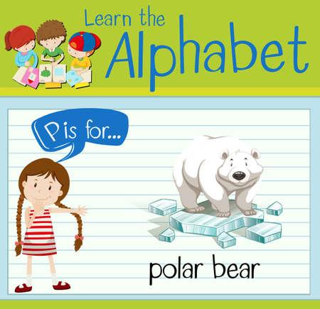 p illustration: Flashcard letter P is for polar bear illustration