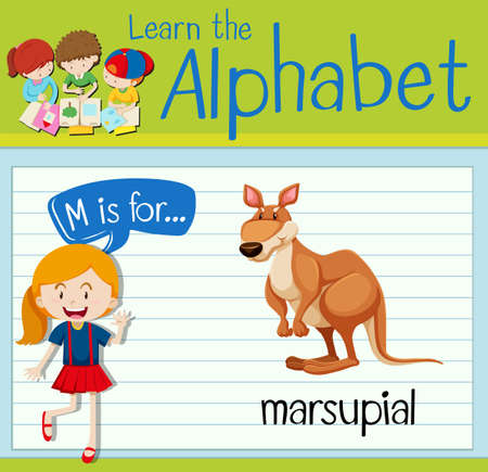 marsupial: Flashcard letter M is for marsupial illustration