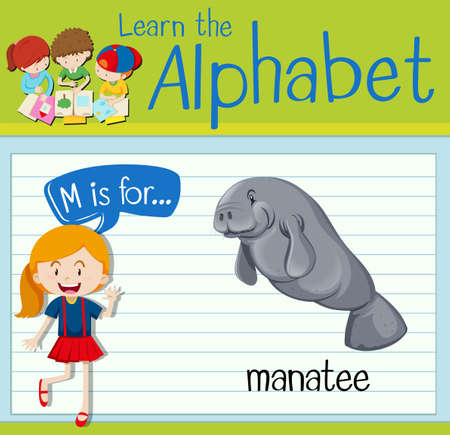 manatee: Flashcard letter M is for manatee illustration Illustration