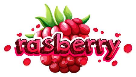 font design: Font design with word rasberry illustration