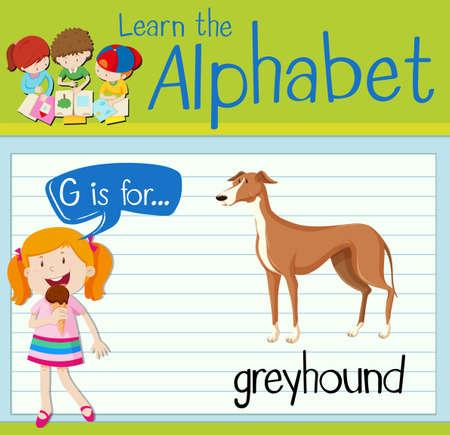 dog sled: Flashcard letter G is for greyhound illustration Illustration