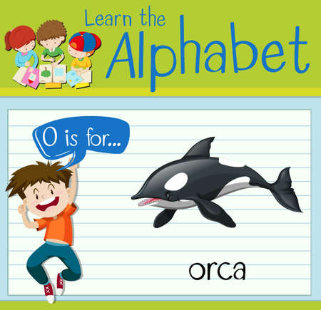 orca: Flashcard letter O is for orca illustration