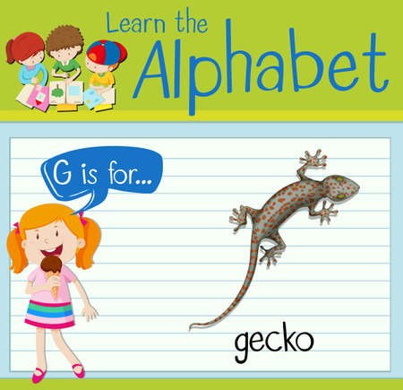 Flashcard alphabet G is for gecko illustration Illustration