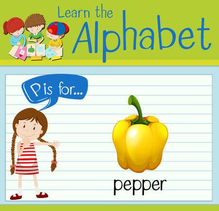 p illustration: Flashcard alphabet P is for pepper illustration Illustration