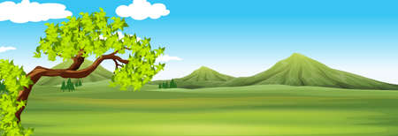 grass land: Nature scene with green field illustration