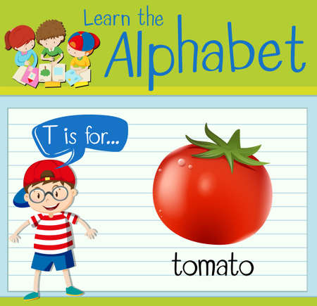 Flashcard letter T is for tomato illustration