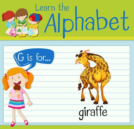 g giraffe: Flashcard alphabet G is for giraffe illustration