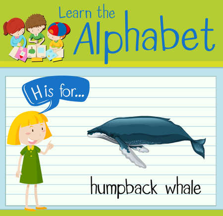 humpback: Flashcard letter H is for humpback whale illustration