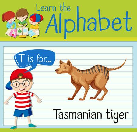 tasmanian: Flashcard letter T is for tasmanian tiger illustration