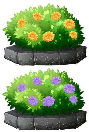 buisson: Fleurs dans l'illustration de brousse Illustration