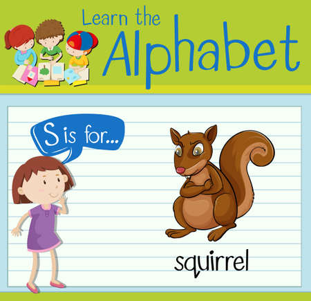 Flashcard letter S is for squirrel illustration