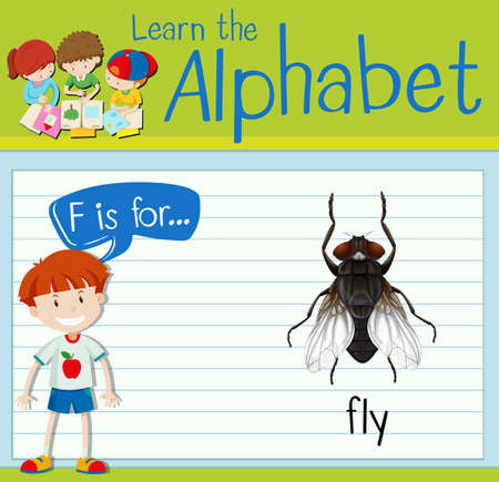 leccion: La letra F de la Flashcard es para la ilustración de la mosca
