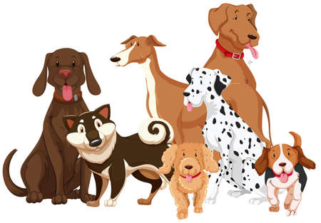 cute dogs: Different types of dogs illustration Illustration