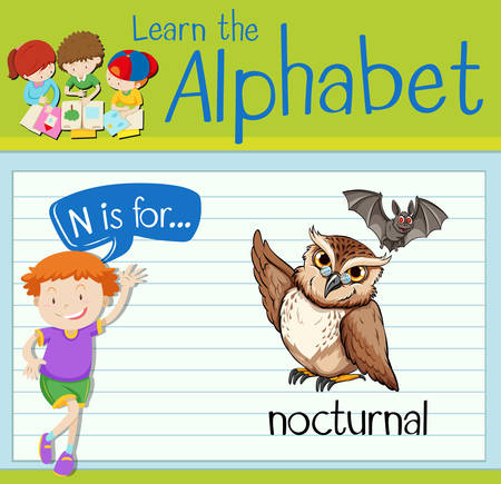 nocturnal: Flashcard letter N is for nocturnal illustration