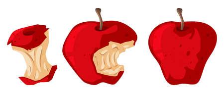Fresh apple and rotten apple illustration