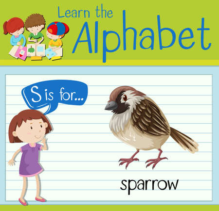 children s art: Flashcard letter S is for sparrow illustration