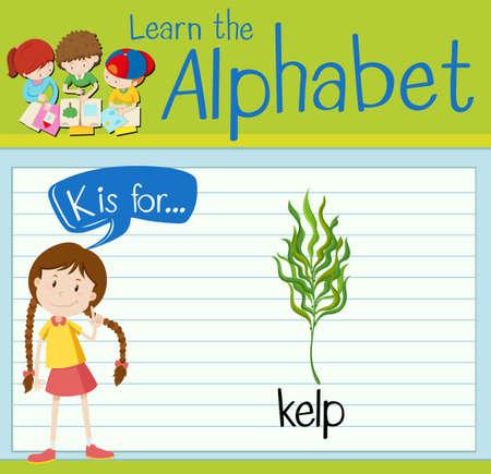 alga marina: Flashcard letter K is for kelp illustration