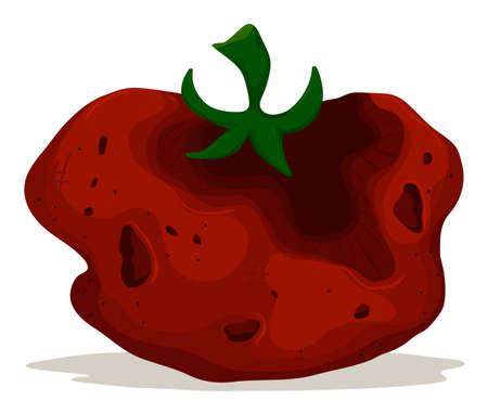 Rotten tomato on white background illustration