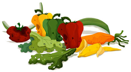 food waste: Rotten vegetables on the floor illustration