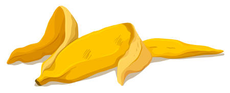 banana skin: Banana skin on the floor illustration Illustration