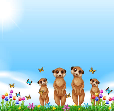 Four meerkats standing in the field illustration