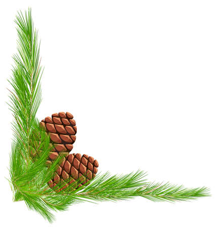 pinecones: Border template with pinecones and leaves illustration