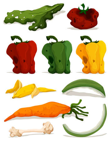 Different types of rotten vegetables illustration