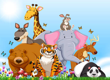funny pictures: Many types of wild animals in the field illustration Illustration