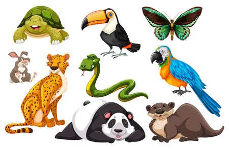 다른 종류의 야생 동물 그림 일러스트