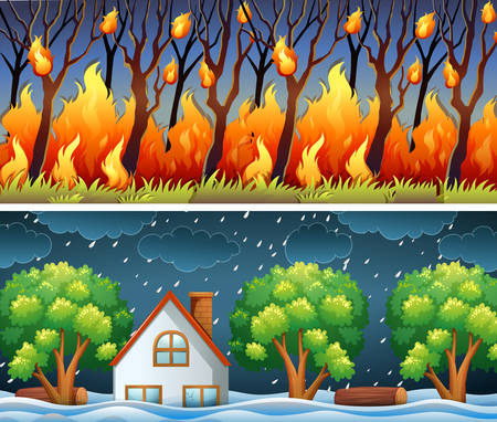 Scenes with forest fire and storm illustration