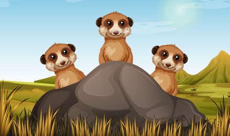 Three meerkats behind the stone illustration