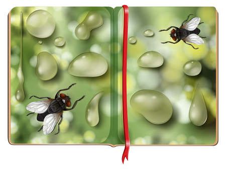 insect flies: Houseflies and water drops in the book illustration Illustration
