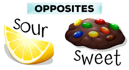Opposite words with sour and sweet illustration Illustration