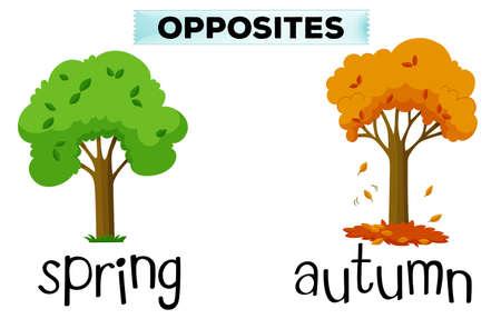 opposite: Opposite words for spring and autumn illustration