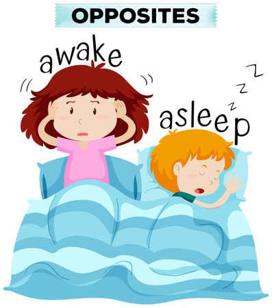 awake: Opposite words for awake and asleep illustration Illustration