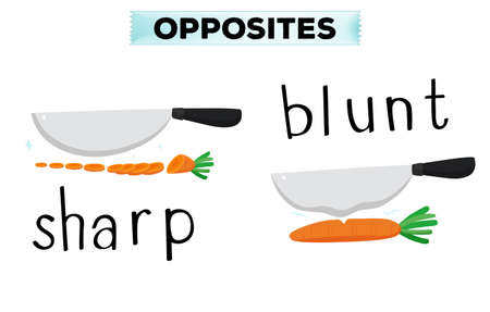 educativo: Palabras opuestas de la ilustración aguda y contundente Vectores