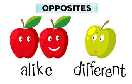 alike: Opposite words for alike and different illustration