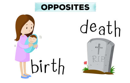 opposite: Opposite flashcard for birth and death illustration