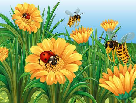 wasps: Ladybugs and wasps flying in garden illustration Illustration