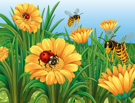Ladybugs and wasps flying in garden illustration Illustration