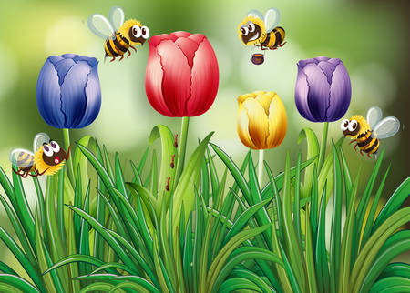 landscape flowers: Bees flying in the tulip garden illustration Illustration