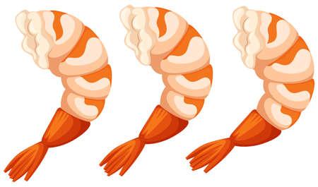 shrimp cocktail: Cooked shrimps on white background illustration