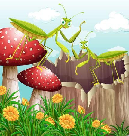 Grasshoppers on wooden log illustration