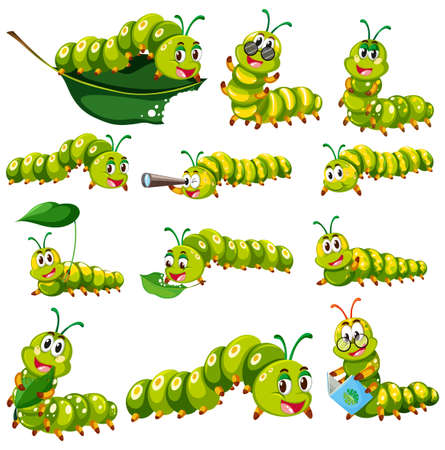 amimal: Green caterpillar character in different actions illustration