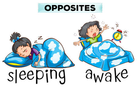awake: Opposite wordcard with word sleeping and awake illustration